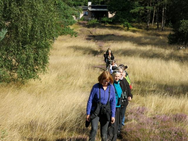 Ad trampestien ned mod Stubbe Sø